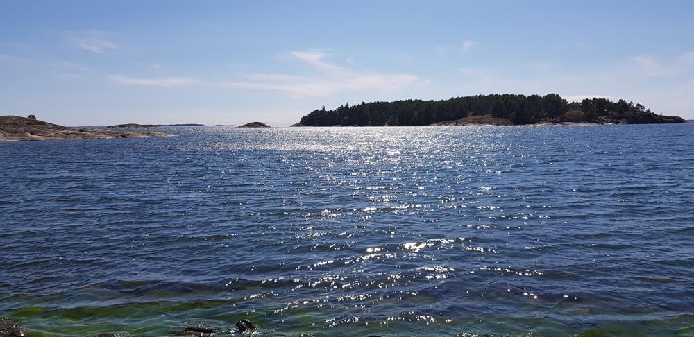 havsvy med solglitter